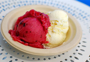 Blueberry and Lime Sorbet Triple Milk ice cream at Mother Moo Creamery   Photo by Joshua Lurie